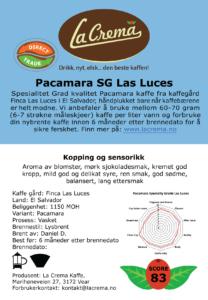 Pacamara - Las Luces